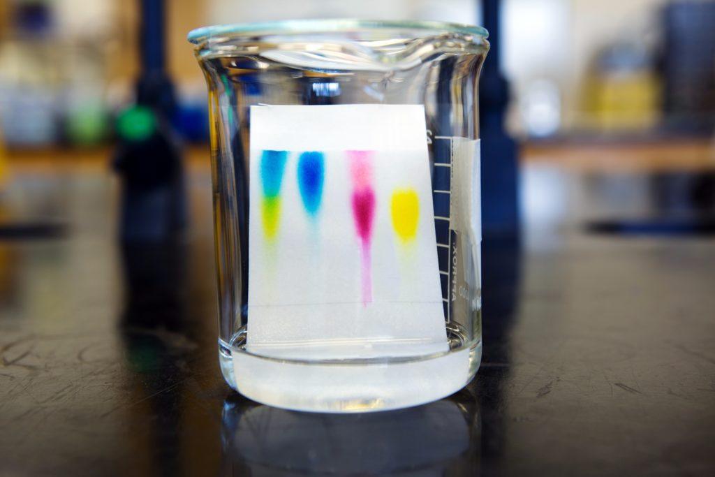 Kid's Chromatography
